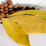 Beneficiile multiple ale frunzelor de dafin